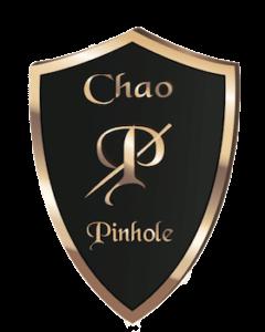 pinhole-shield